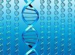 Анализ на генетические заболевания